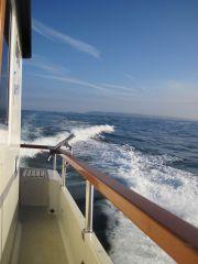 Bye Alderney
