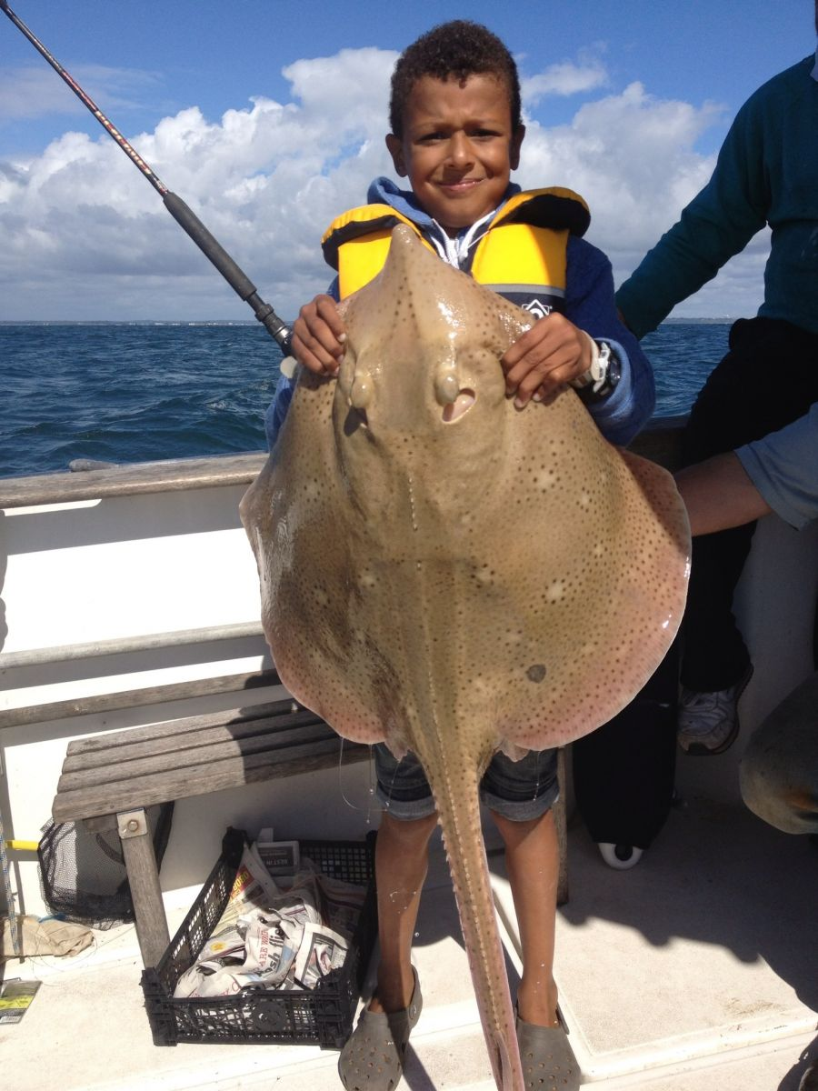 13.75 blonde ray