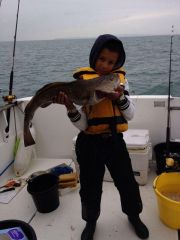 Jacobs first cod