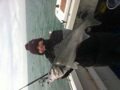 Jack bass 24-11-2013
