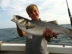 Jacks bass