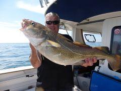 Dave's Summer Cod
