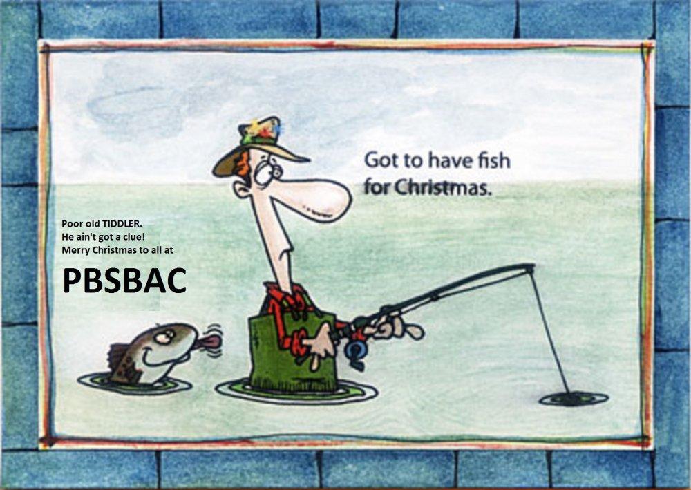 fishing-christmas.jpg
